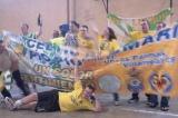 Submari CSC banner