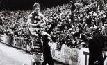 Celtic Champs