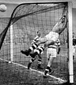 FrankHaffey1959 monkey on goals