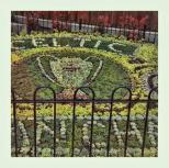 Lisbon flower display