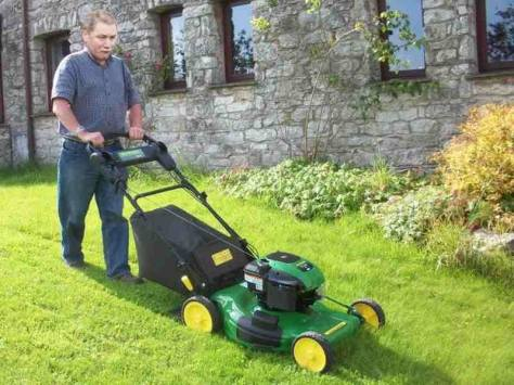Lawnmower Ally