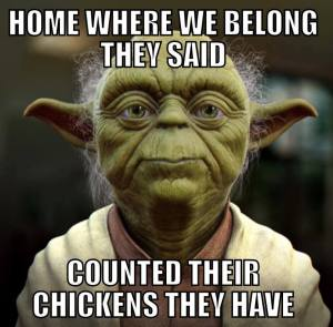 Sevco Yoda
