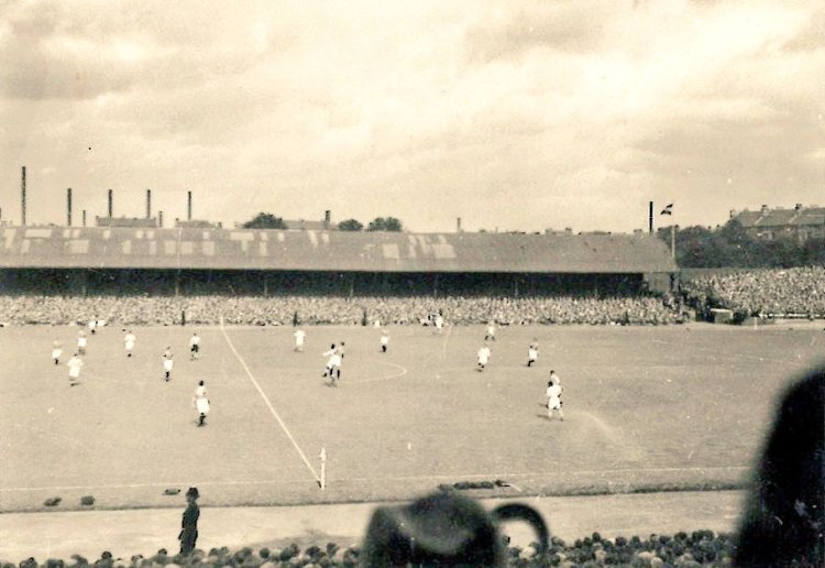 The Jungle Cowshed 1949